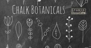 """Tafel Blume Kritzeleien Clipart - """"Kreide Botanicals"""" handgezeichneten Blumen Kreide Blüten und Blätter - kommerzielle Nutzung sofort-Download"""