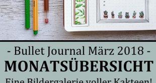 Bullet Journal - März Setup - Mein kleiner grüner Kaktus!
